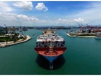去年營運創佳績!港務公司宣布幫員工調薪 基層最高調5.62%