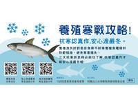 養殖寒戰攻略!漁民署提6招防寒措施