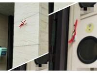 門口被掛「紅布記號」!屋主緊張怕有小偷 網友卻稱讚:這很體貼