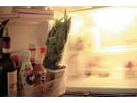 書摘/我的廚房美學-收納提案 品味提升、健康加分!
