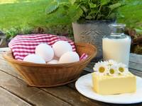 吃鯷魚、豆腐、昆布防鈣流失!中年攝取維生素D要2倍量