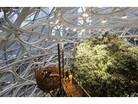 穿梭在熱帶雨林 亞馬遜斥資千億打造Spheres西雅圖總部