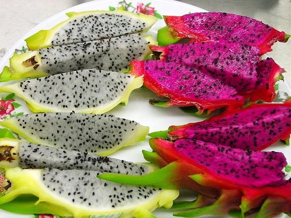 ▲紅肉火龍果,白肉火龍果,火龍果,水果。(圖/取自免費圖庫Pixabay)