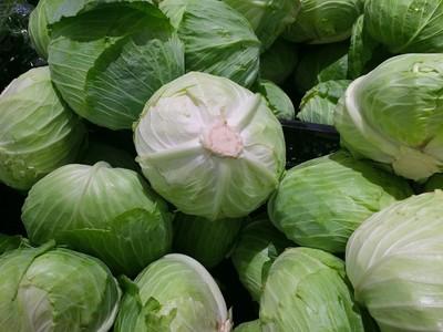 一天花6元吃高麗菜減肥 醫生健康甩肉43公斤