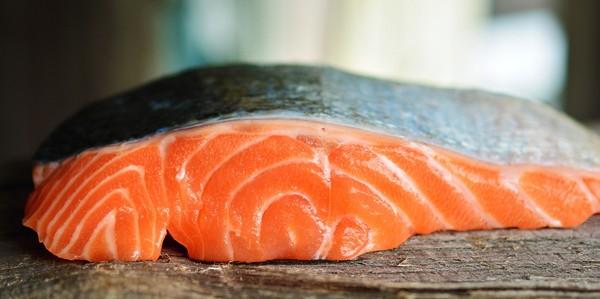 鮭魚。(圖/Pixabay)