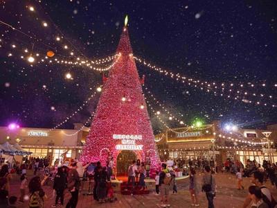 華泰名品城耶誕好好玩 必拍18米桃紅聖誕樹、精品服裝1折起