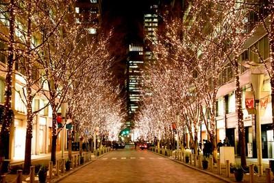 日本「東京燈海」4大景點情侶必去 100萬顆燈飾超浪漫
