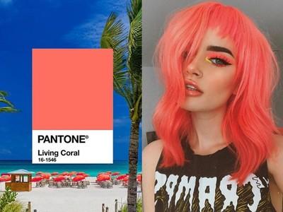 原來Pantone年度代表色是這樣選的 專家讓顏色變得更有力量