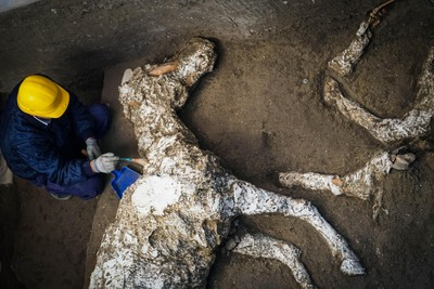 龐貝出土「2000年完整馬屍」!躺高級將領馬廄內 全身還掛滿青銅飾品