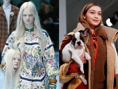 2018最狂時尚大秀盤點 Gucci抱頭顱超驚悚、Tod's超萌毛孩來走秀