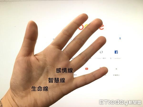 手相,掌紋。(圖/記者周姈姈攝)