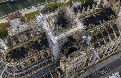 巴黎聖母院重建難!「關鍵木材」法國產不出 1300棵樹才夠復原