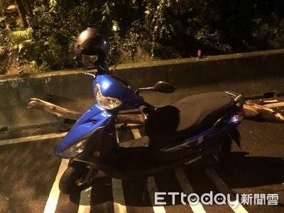 新莊壽山路深夜巨樹倒 2騎士驚嚇摔車1女重傷