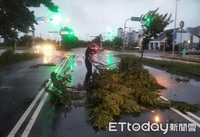 白鹿吹倒路樹阻通行 善警不畏風雨排除路面障礙物