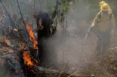 對抗亞馬遜大火 馬克宏:G7領袖將達成協議「提供技術與金援」