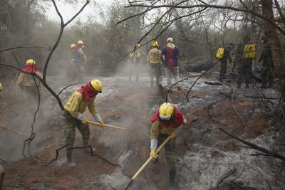 要人給人要錢給錢救「亞馬遜雨林大火」 G7砸7億、日本願助長期護林