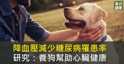 養狗保護心臟健康減少糖尿病 十分鐘大腦就有感