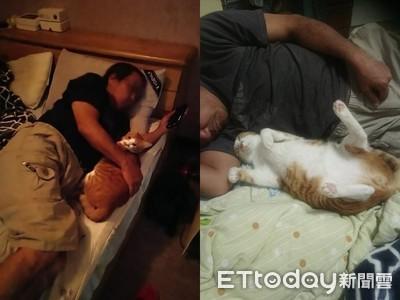 曾批養貓叫不來 阿公夜晚「被孫召喚」主動伸手當臂枕