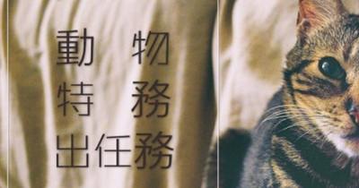Animal×動物特務出任務