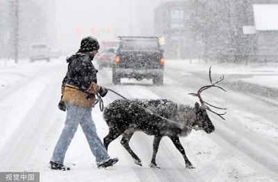 「平紀錄高溫+破紀錄大雪」出現同一天 阿拉斯加暖冬變化超激烈!