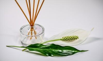 香氛精油是人造or天然?看瓶身、價格「3線索」秒懂真假貨