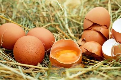 吃蛋=膽固醇飆高?醫曝「拒吃3食材」恐營養不良...1招做到更有效