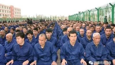 """美國呼籲改善新疆人權狀況 陸外交部反擊""""禁種"""""""