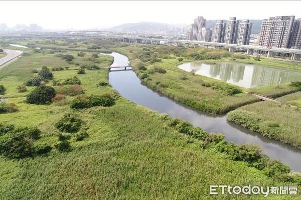 ▲▼五股濕地。(圖/荒野保護協會授權提供)