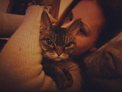 此貓看起來「隨時想殺人」 她每天被殺氣嚇醒…網封:二代不爽貓