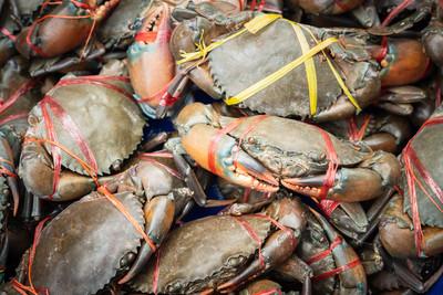 澳洲泥蟹價格慘跌6成多! 漁民:航班少無法保證新鮮度
