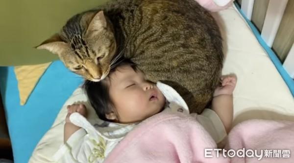 ▲媽眼眶紅了!回房見主子「抱著哄睡」寶寶 心疼她打完疫苗在哭哭。(圖/網友邱芷均提供,請勿隨意翻拍,以免侵權。)