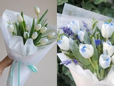 「冰雪女王鬱金香」讓你化身艾莎!藍白配色仙氣爆棚 七夕收到最心動