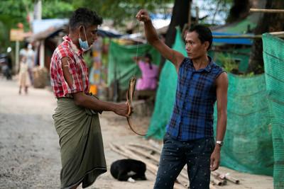 緬甸人被迫「吃老鼠果腹」水溝旁覓食! 新冠失業潮重創貧困區