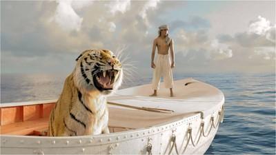 帶一根棍子同籠觀察! 他:老虎緊張時會裝冷靜讓人看不出來
